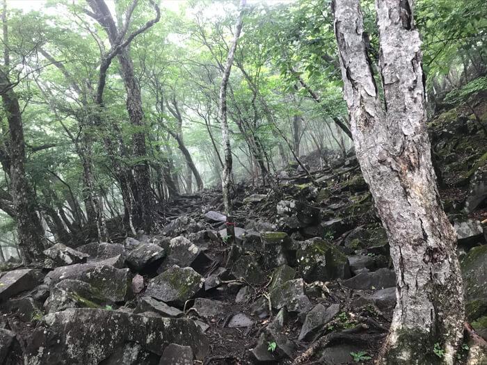山頂で出会った仕事中のサラリーマンから得た人生の教訓